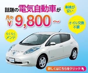 初心者に贈る電気自動車専門Naviの急所!